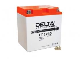 Аккумулятор Delta CT-1230 (YTX30L, YTX30L-BS, YB30L-B)