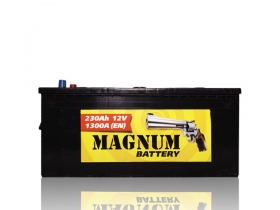 АКБ Magnum 6CT-230 А/ч