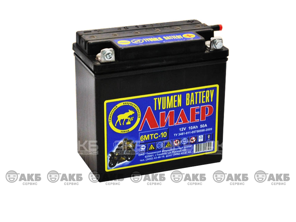 Аккумулятор для мотоцикла Тюмень Tyumen Battery 6MTC-10